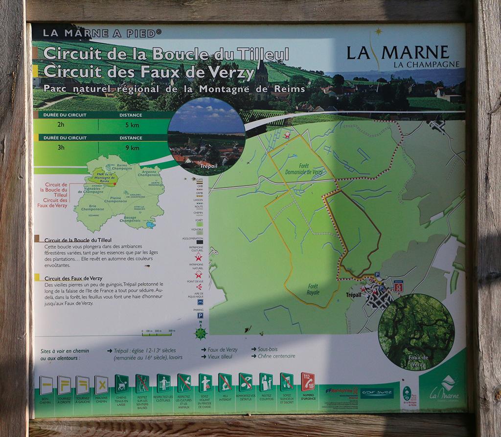 Circuit La boucle du Tilleul à Trépail